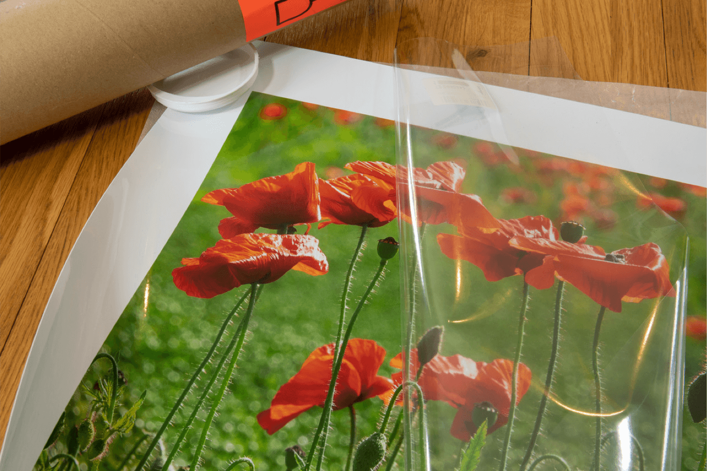 Print only, 700x500mm